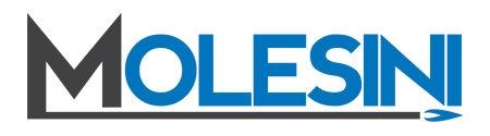 Molesini di Molesini Dr. Paolo & C. S.a.s.